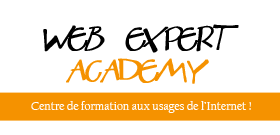 Web Expert Academy